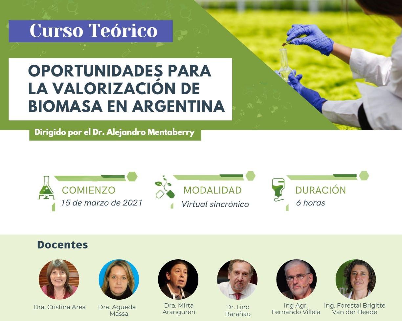 Oportunidades para la Valorización de Biomasa en Argentina